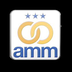 AMM Lapel Pin