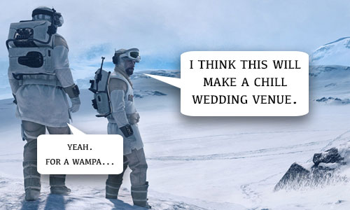 Star Wars Wedding Venue